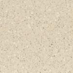 Corian Fossil